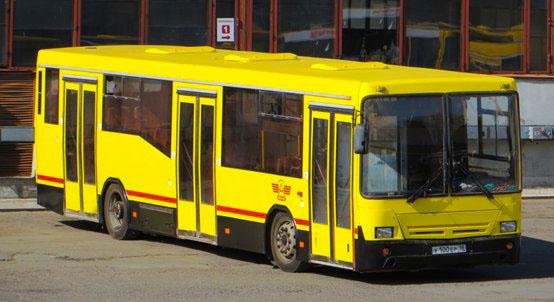 Автобус роза хутор