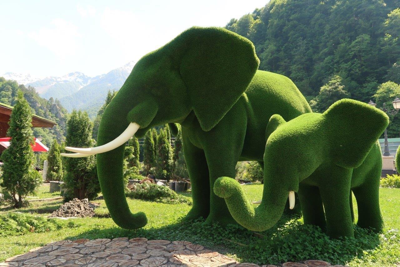 Открылся новый парк «Зеленая планета»